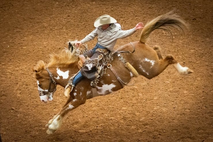 2019 Rodeo Austin, photo by Mark Matson  3/29/19